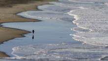Tilt-shift Miniature Of Lone Jogger On Ocean Beach.