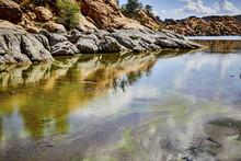 Algae In A Lake