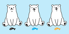 Bear Vector Polar Bear Icon Logo Sitting Cartoon Character Illustration