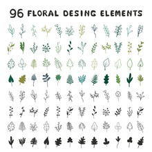 A Large Set Of Leaves, Grasses And Branches. Ideal For Invitations, Weddings, Postcards, Holidays, Design Of Printed Products. Vector Illustration, Background. Universal Floral Elements.