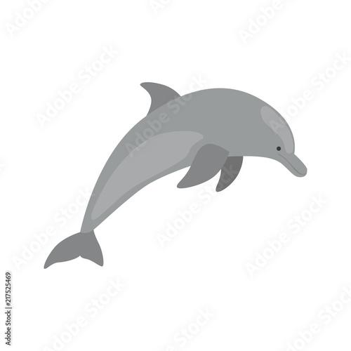 Fotografia Dolphin color vector icon. Flat design