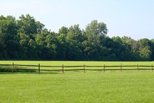 The Green Grass Pasture In The Country On Sunny Day.