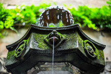 Detail Of A Street Fountain Covered In Moss In Barcelona During Summer - 5