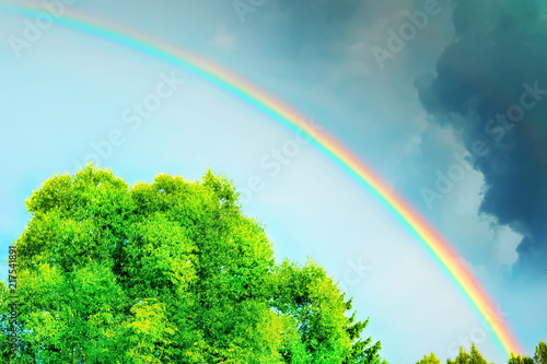 Poster Pony rainbow in the cloudy sky after rain in summer thunderstorm and trees
