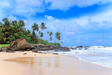 Tropical Beach Of Sri-Lanka