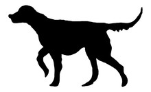Black Silhouette Of Setter, Hunting Dog. Freehand Animal Illustration For Logos, Banners, Posters, Prints, Cards, Advertising