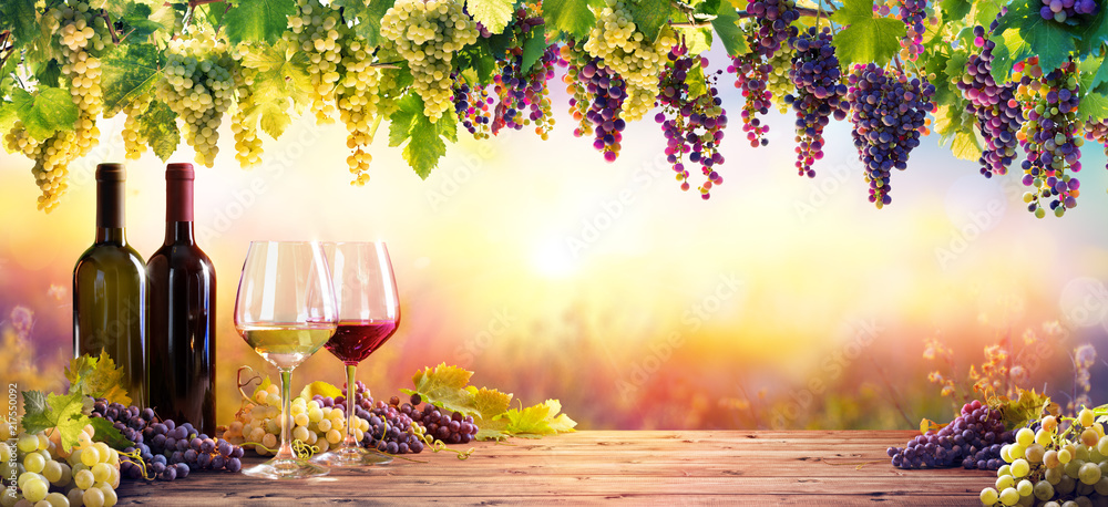 Fototapety, obrazy: Bottles And Wineglasses With Grapes At Sunset