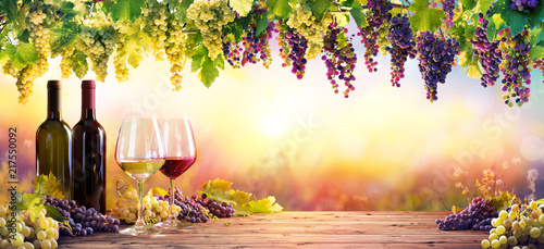 Photo sur Aluminium Vignoble Bottles And Wineglasses With Grapes At Sunset