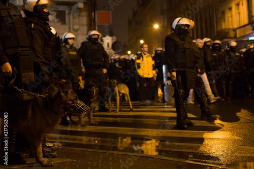 Fotografía  Street riots , police dogs - Poland.