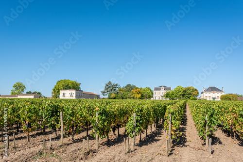 Deurstickers Wijngaard MEDOC (Gironde, France), vignoble de Margaux