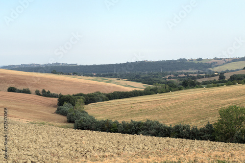 Spoed Foto op Canvas Zalm landscape,agriculture,italy,hill,field,panorama,view,countryside,horizon,summer