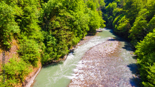 Drone view of the Sochi river gorge with dense forest in sunny summer day, Russia