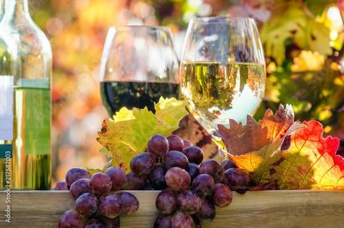 Erntezeit, Genuss in der Pfalz: Weinprobe im Herbst, Rotwein, Weißwein, Weinglas und Trauben im Weinberg :)