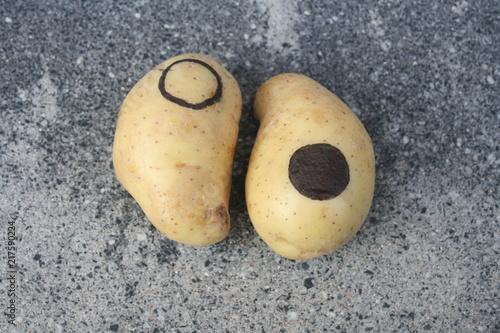 Fotografie, Obraz  Yin und Yang aus Kartoffeln