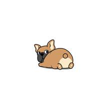 Cute French Bulldog Lying Down...