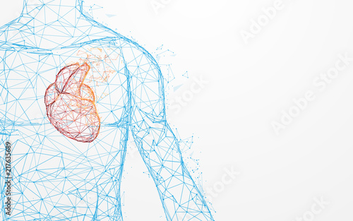 Tela Human heart anatomy form lines and triangles, point connecting network on blue background