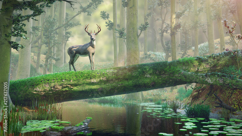 Poster Olive deer standing on fallen tree bridge in beautiful foggy landscape