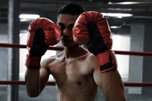 Boxer On The Ring