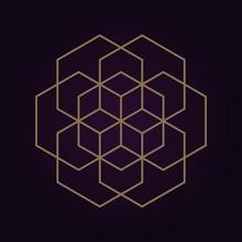 Vector Gold Abstract Mandala Sacred Geometry Illustration Isolated Dark Background