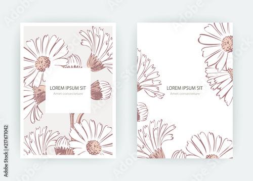 Pinturas sobre lienzo  Card flowers Calendula, Chrysanthemum, Chamomile, Daisy, Aster