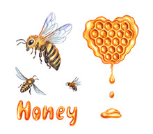 "Set Of Bees, Honeycombs And The Inscription ""honey"", Watercolor Drawing On A White Background, Isolated With Clipping Path."