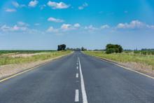 Tarred Rural Road In The Frees...