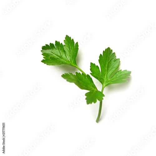 Fotomural  Parsley isolated