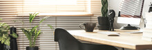 Coffee Cup, Creative Clock And A Desktop Computer On A Wooden Desk In A Sunny Workspace Interior With Plants