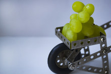 The Garden Wheelbarrow Is Made Of A Metal Children's Designer With Grapes.