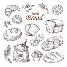 Sketch Bread, Hand Drawn Baker...