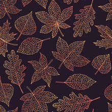 Vector Autumn Seamless Pattern With Oak, Poplar, Beech, Maple, Aspen And Horse Chestnut Leaves Outline On The Dark Background. Fall Gradient Line Art Of Foliage.