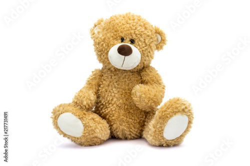 Fotomural Teddy Bear