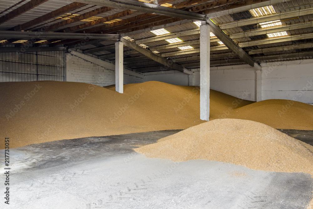 Fototapety, obrazy: interior of a granary full of wheat piles