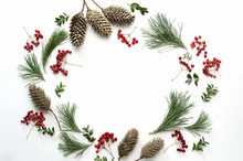 Christmas Holidays Botanical Background, Flat Lay Composition