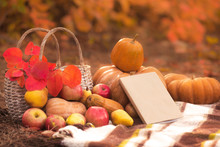 Book With Seasonal Fruits And Vegetables On Autumn Background Outside. Still Life For Thanksgiving In Warm Colors.