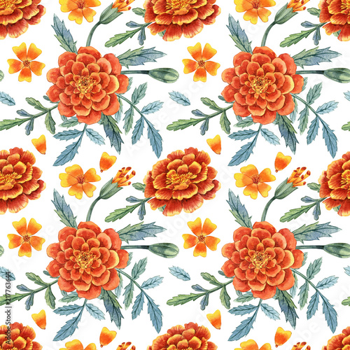 Cuadros en Lienzo  marigold flowers