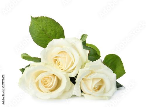 Fotografia Beautiful fresh roses on white background. Funeral symbol