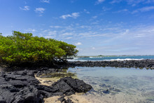 Scenic Galapagos Volcanic Shor...