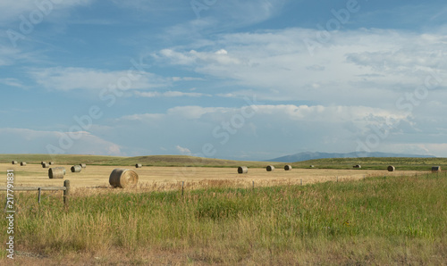 Cadres-photo bureau Message inspiré A Farmer's Field with Large Round Hay Bales