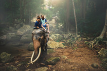 Tourist Couple Riding Elephant...