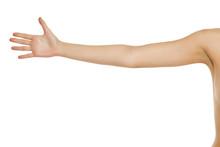 Whole Female Arm On White Back...