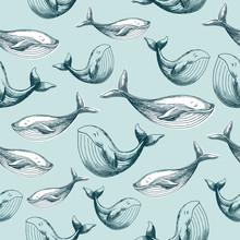 Whale Kids Seamless Pattern. Kids