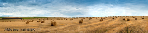 Fotografia view of hay bales on the field after harvest