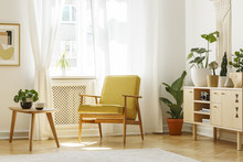 Real Photo Of A Retro Armchair, Coffee Table And Cabinet In A Living Room Interior Decorated With Plants