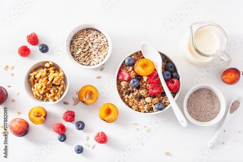 Fototapeta healthy granola for breakfast with berry fruit nut, vegan milk obraz