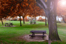 Picnic Table In Autumn Park At Sunny Day