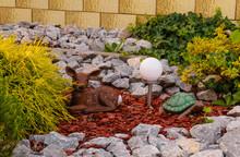 Decorative Deer And Tortoise In A Garden