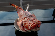 Red Fish Of The Adriatic Sea