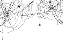 Halloween Spiderweb Vector Bac...