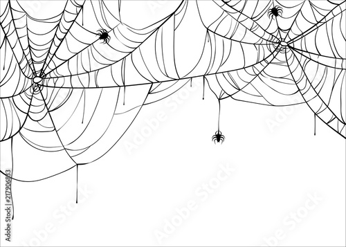 Fotografiet Halloween spiderweb vector background with spiders, copy space